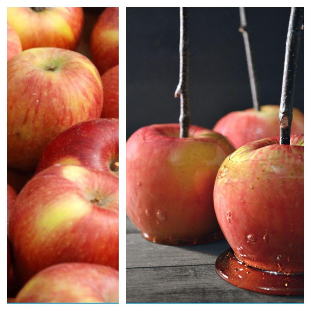 kandiseret æble